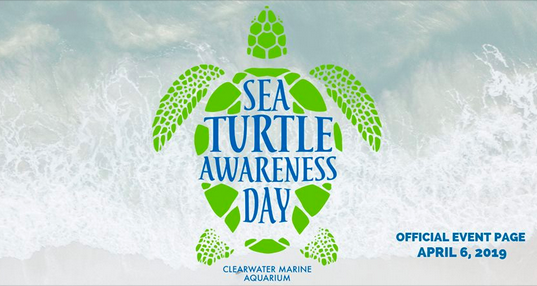 Sea Turtle Awareness Day, April 6, 2019