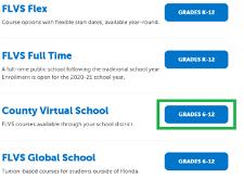 Choose County Virtual School